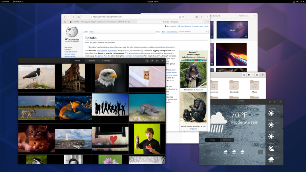 Fedora 31 with GNOME 3.34