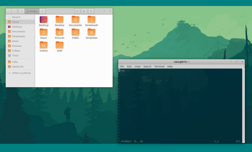 Ubuntu and GNOME | Move the snap folder away from your home